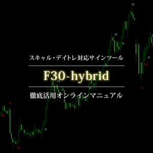 F30-hybridオンラインマニュアル