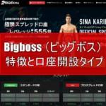 Bigboss fx(ビッグボスfx) の特徴と口座開設タイプを分かりやすく解説