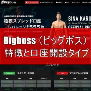 Bigboss (ビッグボス) の特徴と口座開設タイプを分かりやすく解説